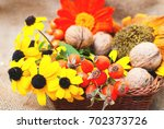 botanical background with... | Shutterstock . vector #702373726