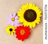 botanical background   garden... | Shutterstock . vector #702373756
