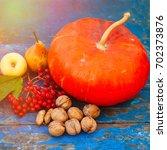 pumpkin nuts viburnum and fruit ...   Shutterstock . vector #702373876