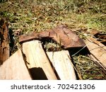 Small photo of Agglomerated wood with a small ax in the woods.