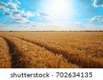 beautiful landscape of wheat... | Shutterstock . vector #702634135