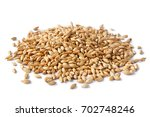 malted barley isolated on white ... | Shutterstock . vector #702748246