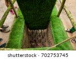 ho chi minh  vietnam    august...   Shutterstock . vector #702753745
