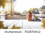 vegetables and gardener's tools ... | Shutterstock . vector #702870412
