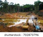 Rainforest Destruction. Gold...