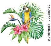 big yellow macaw parrot ... | Shutterstock . vector #702886492