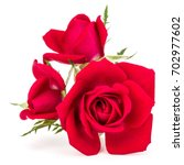 Stock photo red rose flower bouquet isolated on white background cutout 702977602