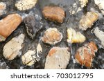 river stones covered with... | Shutterstock . vector #703012795