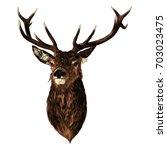deer sketch vector graphics... | Shutterstock .eps vector #703023475
