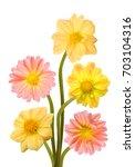 beautiful bouquet of dahlia... | Shutterstock . vector #703104316