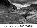 Mountain Lanscape With A Singl...