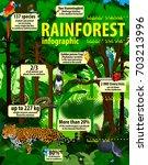 rainforest jungle infographic... | Shutterstock .eps vector #703213996