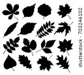 black silhouettes of leaves... | Shutterstock . vector #703246102