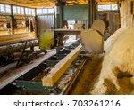 sawmill. process of machining... | Shutterstock . vector #703261216