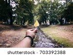 mans hand holding fallen leaf... | Shutterstock . vector #703392388