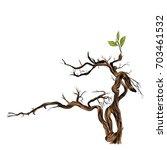 dry branch sketch vector... | Shutterstock .eps vector #703461532