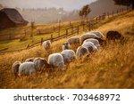 Flock Of Sheep At Sunset....