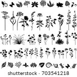big collection of plants | Shutterstock .eps vector #703541218