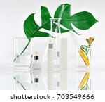 cosmetic bottle containers with ... | Shutterstock . vector #703549666