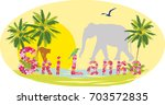 sri lanka tourism  vacation ... | Shutterstock .eps vector #703572835