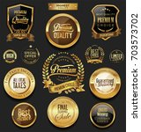 luxury retro badges gold and... | Shutterstock .eps vector #703573702