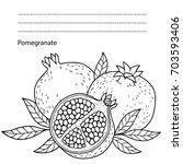 vector pomegranate on white... | Shutterstock .eps vector #703593406