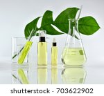 natural skin care beauty... | Shutterstock . vector #703622902