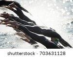 stockholm  sweden   aug 26 ... | Shutterstock . vector #703631128