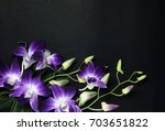 Purple Orchids Group Open At...