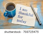 i am thankful for today  ... | Shutterstock . vector #703725475