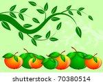 apples | Shutterstock . vector #70380514