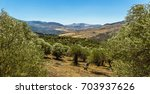 a view from the madonie... | Shutterstock . vector #703937626