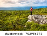 woman stands on a cliff edge... | Shutterstock . vector #703956976