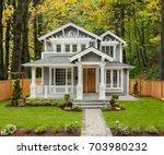 beautiful  newly built luxury... | Shutterstock . vector #703980232