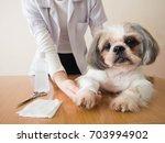 female professional... | Shutterstock . vector #703994902