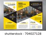 business brochure. flyer design.... | Shutterstock .eps vector #704027128