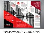 business brochure. flyer design....   Shutterstock .eps vector #704027146