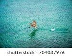 Brown Pelican Flying. Pelican...
