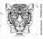 hipster animal tiger. hand... | Shutterstock .eps vector #704061526