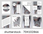 abstract vector layout... | Shutterstock .eps vector #704102866
