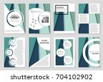 abstract vector layout... | Shutterstock .eps vector #704102902