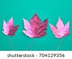 Autumn Fashion Fall Background...
