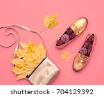 fall fashion glamour lady look. ... | Shutterstock . vector #704129392