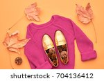 fall fashion woman clothes set. ... | Shutterstock . vector #704136412