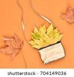 autumn minimal design. fall... | Shutterstock . vector #704149036