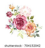 watercolor flowers. hand... | Shutterstock . vector #704152042