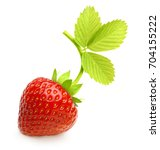 red berry strawberry isolated... | Shutterstock . vector #704155222
