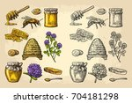 honey set. jars of honey  bee ... | Shutterstock .eps vector #704181298