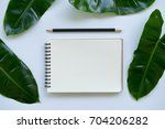 creative flat lay design of... | Shutterstock . vector #704206282