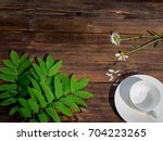 Empty White Cup  With Spring...